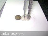 DSC03064.jpg - 25kB
