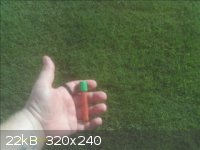 red_0001.jpg - 22kB