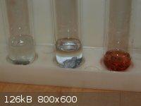 Cd Acid Test 2.jpg - 126kB