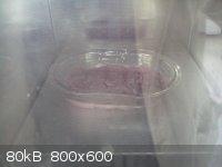 DSC00055.jpg - 80kB