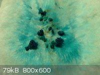 NiNH4C2O4.jpg - 79kB