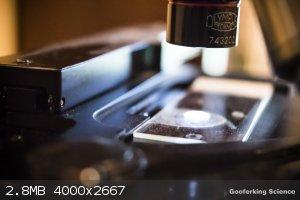 Microscoperesize.jpg - 2.8MB