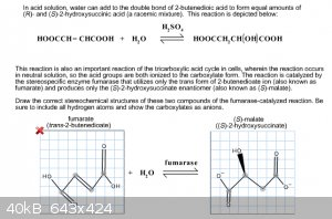 homework1.png - 40kB