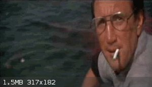 samuel-jackson-is-the-main-character-in-jaws-you-didnt-know-that.gif - 1.5MB