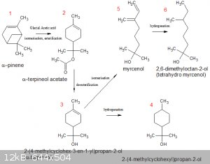 alpha pinene derivatives.gif - 12kB