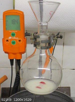 Benzoin 2 thiamine slurry.jpg - 921kB