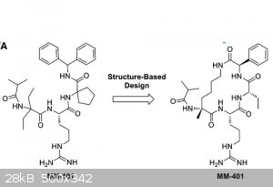 MM401cyclization.png - 28kB