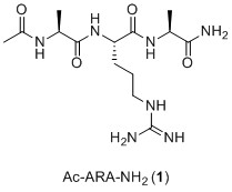Ac-ARA-NH2.jpg - 7kB