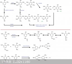 isopicramic reactions.jpg - 176kB