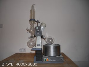 DSCN0021.JPG - 2.5MB