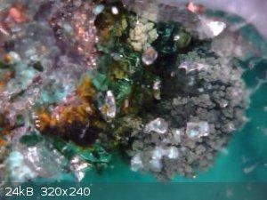 2017-09-02-202631-closeupGelDLA.jpg - 24kB