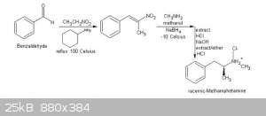 Nitroalkenes and redutive amination with methylamine and borohydride.JPG - 25kB