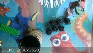 IMAG5354.jpg - 1.1MB