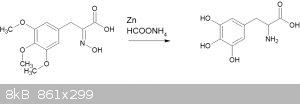 amino acid.gif - 8kB