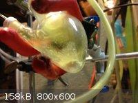 IMG_0901.JPG - 158kB