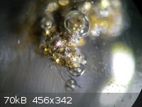 Gold Capillary.jpg - 70kB