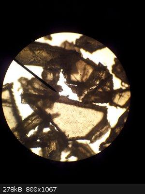 Flake Propellant Microscope Picture.jpg - 278kB