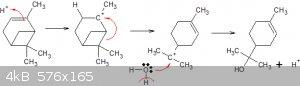 alpha pinene to terpineol.gif - 4kB