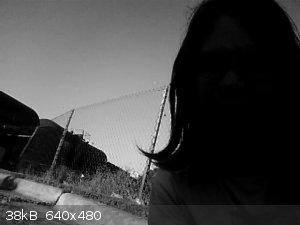 asdfasdfsd.jpg - 38kB