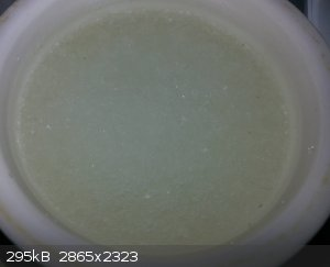 06 acic & h2o2 washed.jpg - 295kB